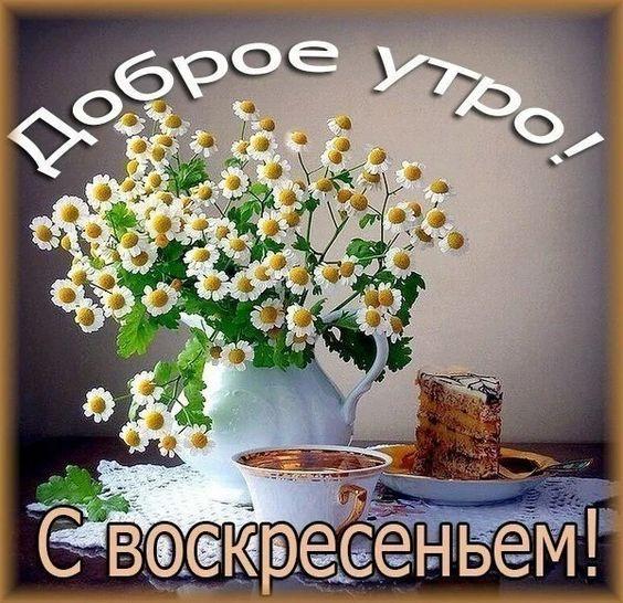 Read more about the article Доброго утра воскресенья!