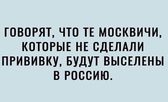 Read more about the article Новые прикольные шуточки