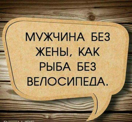 Read more about the article Новые ржачные до слез шуточки