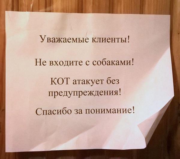 Read more about the article Смешные до слез объявления