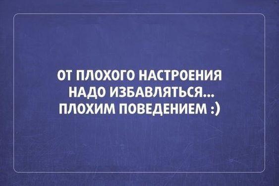 Read more about the article Свежие смешные до слез шутки и фразы