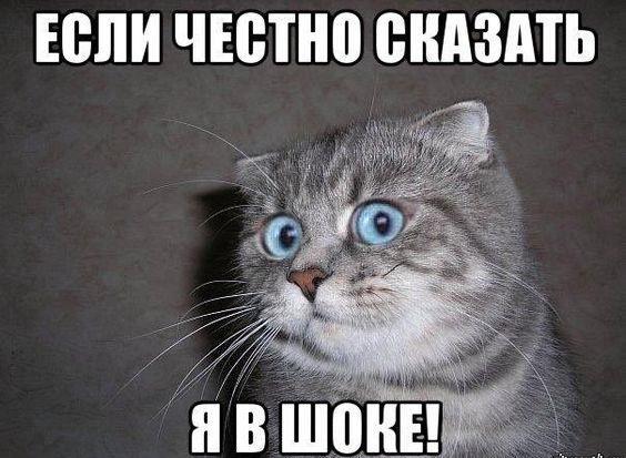 Read more about the article Свежие веселые мемы субботы