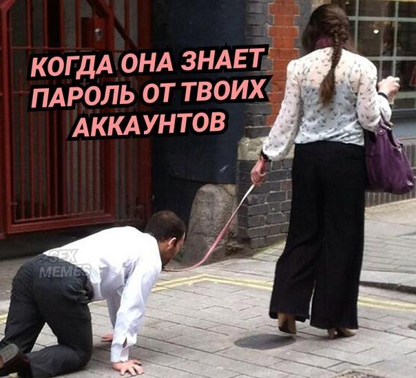 Read more about the article Свежие веселые мемы понедельника