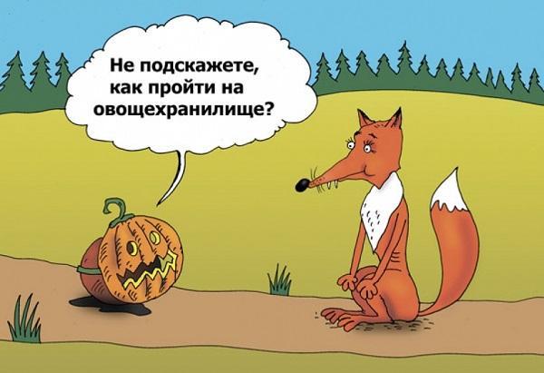 Read more about the article Свежайшие смешные анекдоты