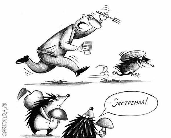 Read more about the article Свежайшие убойные анекдоты