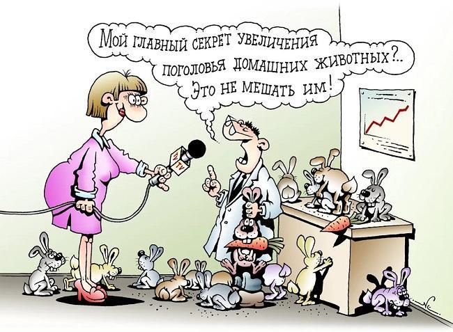 Read more about the article Забавные свежие анекдоты вторника