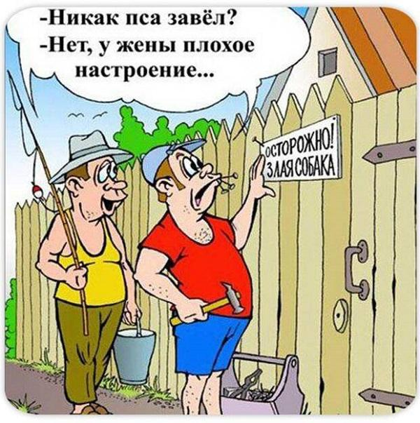 Read more about the article Улетные свежие анекдоты воскресенья
